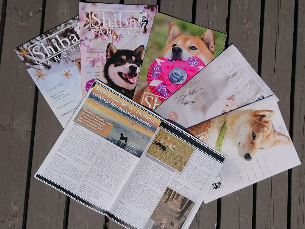 Koirayhdistyksen jäsenlehden taitto ja kuvitus